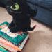 Kirjoja 5-vuotiaalle ja tunnekortti-ihastus